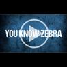 1805-pos-zebra-total-rfid-solutions-333x333